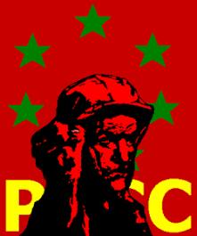 Partido Revolucionario de los Comunistas de Canarias (PRCC)