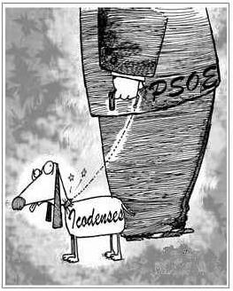 Icodenses_de_manos