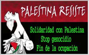 Palestina resiste. Stop genocidio