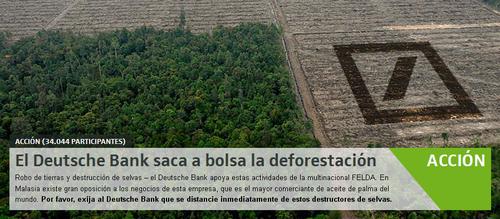 Salva la selva