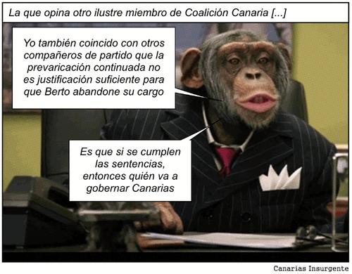 Lo que opina otro ilustre miembro de Coalición Canaria