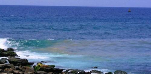 IUC denuncia que EMALSA envenena el litoral de nuestra ciudad