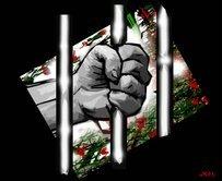 Desalambrando conciencias (Vivimos en libertad condicional)