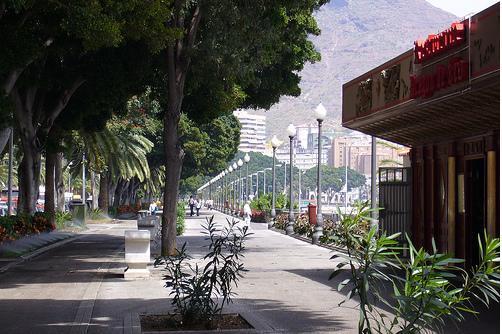 Unidad del Pueblo demanda la mejora del carril bici de Santa Cruz de Tenerife